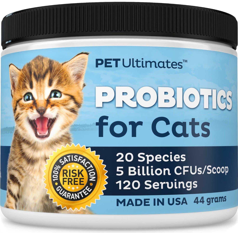 best probiotics for cats 2017. Black Bedroom Furniture Sets. Home Design Ideas