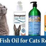 best-fish-oil-for-cats-review