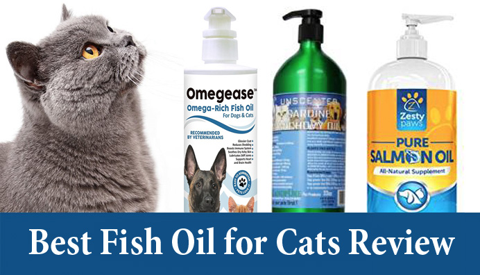 Best Fish Oil For Cats Review Pronutrics