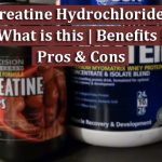 Creatine Hydrochloride What is this Benefits Pros & Cons